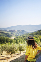 Tourist looking at olive orchard