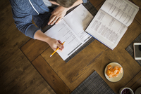 Teenage boy (16-17) studying at home, overhead view