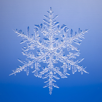 Microscopic image of actual snowflake