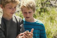 Two boys looking at frog