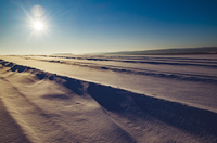 Winter landscape with snow and sun