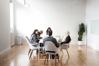 People sitting around table at business meeting