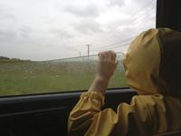 Rear view of boy looking through car window during rainy season