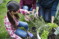 Mother and sister helping girl in gardening at yard