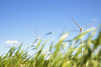 Wind turbines on grassy field against blue sky