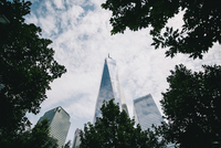 Low angle view of One World Trade Center and trees against cloudy sky