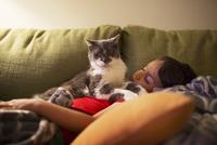 Portrait of cat sitting on boy sleeping on sofa at home 11100036960  写真素材・ストックフォト・画像・イラスト素材 アマナイメージズ