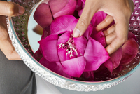 Cropped image of woman placing lotus in bowl at beauty spa