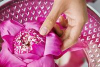 Woman placing lotus in bowl at beauty spa