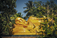 Golden reclining Buddha statue surrounded by trees