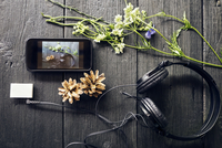 Overhead view of various electronic equipment with flowers and pine cones on table