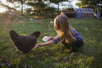 Girl feeding hen on field at farm