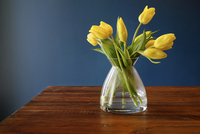 Yellow tulips in vase on wooden table against wall