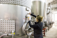 Rear view of female expert tasting wine from industrial tanks