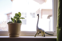 Toy dinosaur and potted plant on window sill