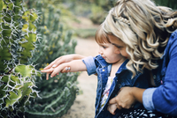 Mother assisting curious girl in touching cactus thorn