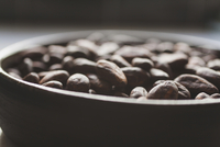 Close-up of coco beans in bowl