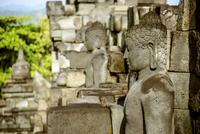 Buddha statues at Prambanan temple 11100049611| 写真素材・ストックフォト・画像・イラスト素材|アマナイメージズ