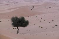 High angle view of sand in Abu Dhabi desert