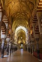 Pattern ceiling in Alhambra Palace 11100050159| 写真素材・ストックフォト・画像・イラスト素材|アマナイメージズ