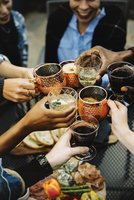 Cropped image of happy friends toasting drinks in backyard 11100050617| 写真素材・ストックフォト・画像・イラスト素材|アマナイメージズ