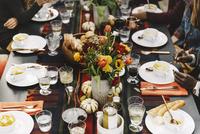 High angle view of friends enjoying food in backyard 11100050711| 写真素材・ストックフォト・画像・イラスト素材|アマナイメージズ