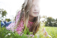 Portrait of girl holding dandelion while lying on grassy field in park 11100053047| 写真素材・ストックフォト・画像・イラスト素材|アマナイメージズ