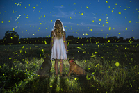 Rear view of woman with dogs standing on field at dusk 11100053612| 写真素材・ストックフォト・画像・イラスト素材|アマナイメージズ