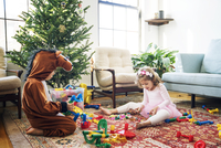 Siblings playing with building blocks while sitting by Christmas tree at home 11100055182| 写真素材・ストックフォト・画像・イラスト素材|アマナイメージズ
