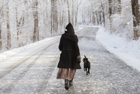 Rear view of woman walking with dog on road during winter 11100056939| 写真素材・ストックフォト・画像・イラスト素材|アマナイメージズ