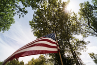 Low angle view of American flag by trees against sky