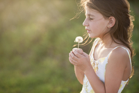 Side view of girl holding dandelion seed while standing on grassy field 11100057752| 写真素材・ストックフォト・画像・イラスト素材|アマナイメージズ