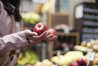 Cropped image of woman holding apples at store 11100057820| 写真素材・ストックフォト・画像・イラスト素材|アマナイメージズ
