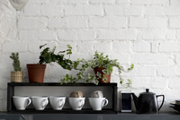 Cups with potted plants arranged on shelf by mobile phone and kettle at home 11100058299| 写真素材・ストックフォト・画像・イラスト素材|アマナイメージズ