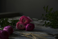 Close-up of pink roses on wooden table
