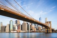 Brooklyn Bridge over East River in city against sky 11100059032| 写真素材・ストックフォト・画像・イラスト素材|アマナイメージズ