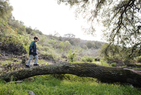 Side view of boy walking on tree trunk against sky in forest 11100059528| 写真素材・ストックフォト・画像・イラスト素材|アマナイメージズ