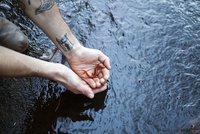 Cropped hands of man holding salamander at stream in forest