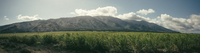 Panoramic view of field against mountains