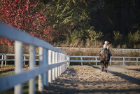 Girl riding horse in ranch 11100060915| 写真素材・ストックフォト・画像・イラスト素材|アマナイメージズ
