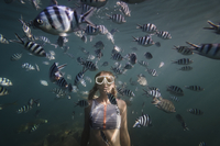 woman swimming by fish underwater