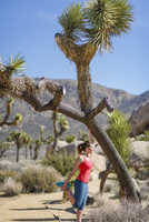 Side view of female hiker exercising at Joshua Tree National Park during sunny day 11100062190| 写真素材・ストックフォト・画像・イラスト素材|アマナイメージズ