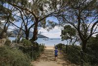 Rear view of boy walking on trail leading towards beach