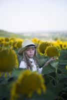 Portrait of confident teenage girl standing in sunflower field against clear sky 11100062435| 写真素材・ストックフォト・画像・イラスト素材|アマナイメージズ