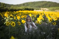 Teenage girl holding flowers on sunflower field 11100062443| 写真素材・ストックフォト・画像・イラスト素材|アマナイメージズ