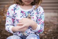 Midsection of girl holding baby chicken 11100062619  写真素材・ストックフォト・画像・イラスト素材 アマナイメージズ