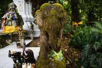 Ribbon tied on moss covered elephant sculpture at temple
