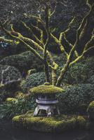 High angle view of stone lantern at park 11100063459| 写真素材・ストックフォト・画像・イラスト素材|アマナイメージズ