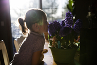 Side view of girl smelling flowers on table at home 11100063481| 写真素材・ストックフォト・画像・イラスト素材|アマナイメージズ