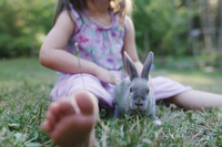Low section of girl playing with rabbit while sitting on grassy field at park 11100065230| 写真素材・ストックフォト・画像・イラスト素材|アマナイメージズ